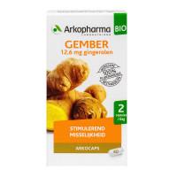 Arkogélules gingembre bio 40 gélules
