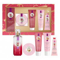 Coffret 2020 Gingembre Rouge