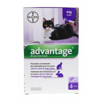 Advantage  Chat de 4 Kg et plus