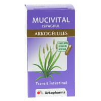 Arkogélules Mucivital