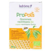 Propolis Gommes Ravintsara Bio