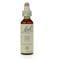 Original Wild Rose 20 ml