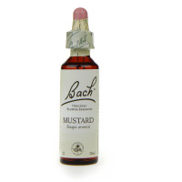 Original Mustard 20 ml